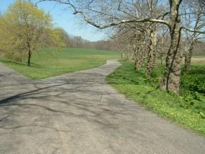West of Sleepy Hollow Road