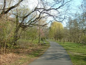 More of the Path, in Yonkers